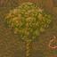 Mana Tree