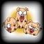 The Three Little Pigheads\