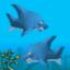 A Brutal Sharking
