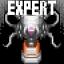 Expert Execution