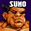 Racer Sumo