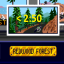 Redwood Forest Time Trial