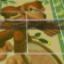Donkey Kong Court