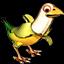 Famille des Oiseau Banane