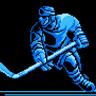 Pro Sport Hockey
